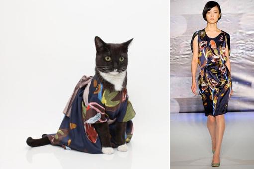 united-bamboo-cat-calendar-1