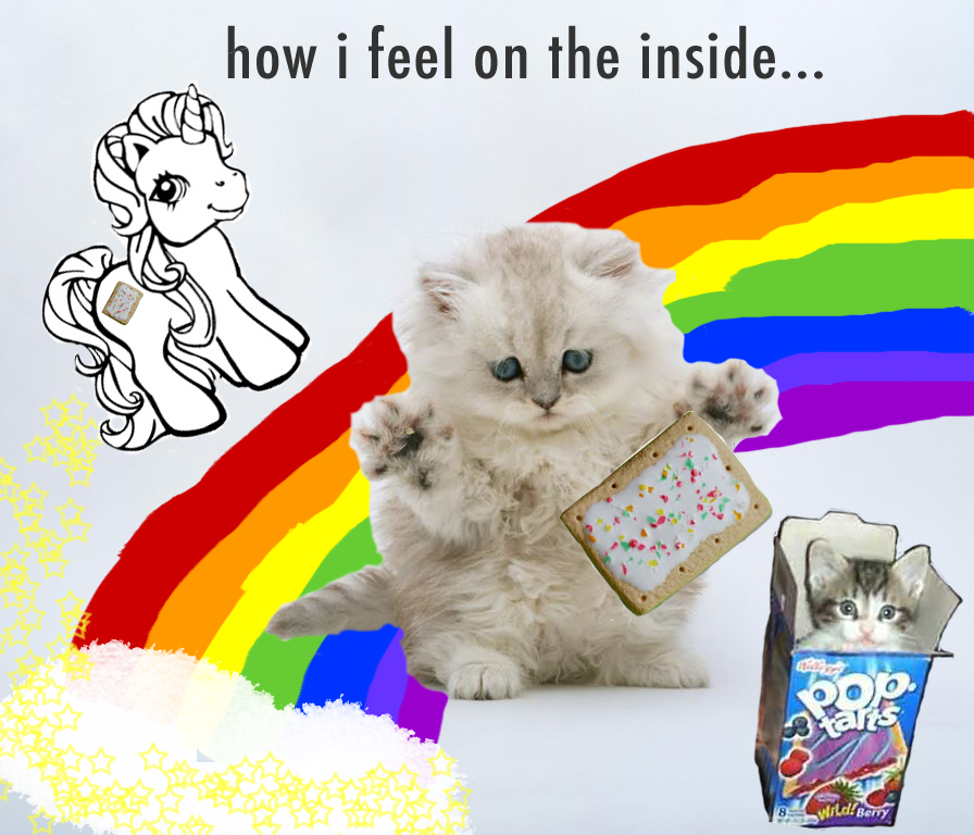 https://fashionablepeople.files.wordpress.com/2011/04/poptart-kitten-rainbow-unicorn.jpg#.png