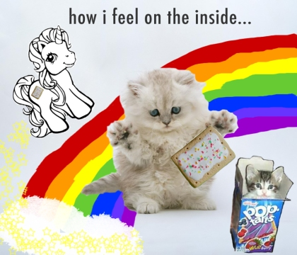 poptart kittens rainbow unicorn
