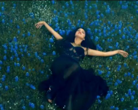 Selena-Gomez-flower-field